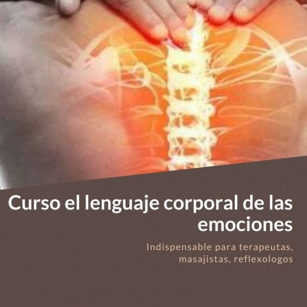 Curso el lenguaje cor (1)